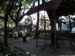 Area Outbound Taman Flora Bratang