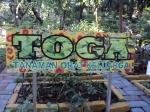Tanaman Toga di Taman Flora Bratang