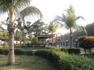 Taman Petekan